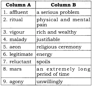 RBSE Solutions for Class 10 English Prose Chapter 6 What is Amiss With Us 2