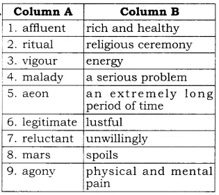 RBSE Solutions for Class 10 English Prose Chapter 6 What is Amiss With Us 2a