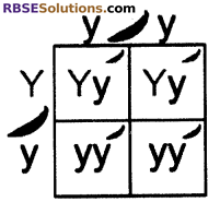 RBSE Solutions for Class 10 Science Chapter 3 Genetics image - 6