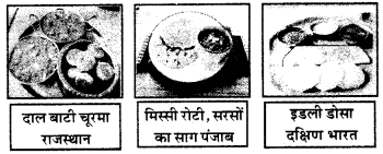 RBSE Solutions for Class 6 Science Chapter 1 भोजन के स्रोत 2