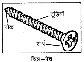 RBSE Solutions for Class 6 Science Chapter 11 सरल मशीन 5