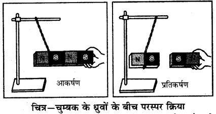 RBSE Solutions for Class 6 Science Chapter 13 चुम्बकत्व 5