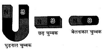 RBSE Solutions for Class 6 Science Chapter 13 चुम्बकत्व 8