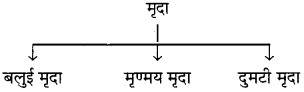 RBSE Solutions for Class 6 Science Chapter 17 वायु, जल व मृद्रा 8
