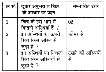 RBSE Solutions for Class 7 Science Chapter 10 कंकाल एवं संधियाँ 10