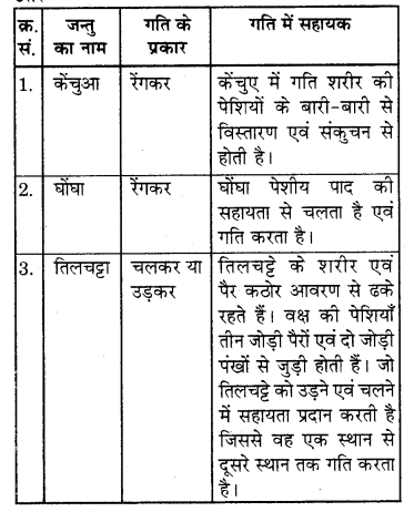 RBSE Solutions for Class 7 Science Chapter 10 कंकाल एवं संधियाँ 15