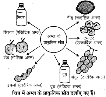 RBSE Solutions for Class 7 Science Chapter 5 अम्ल, क्षारक एवं लवण 9