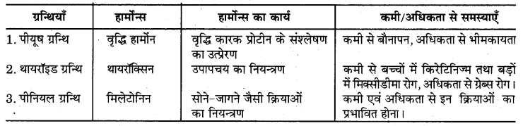 RBSE Solutions for Class 7 Science Chapter 6 अन्त स्रावी ग्रन्थियाँ 4
