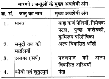 RBSE Solutions for Class 7 Science Chapter 7 जैव विकास 10