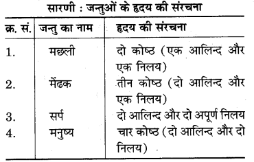 RBSE Solutions for Class 7 Science Chapter 7 जैव विकास 8
