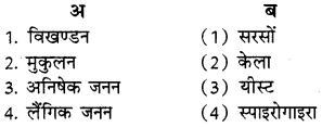 RBSE Solutions for Class 8 Science Chapter 6 पौधों में जनन 1
