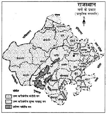RBSE Solutions for Class 9 Social Science Chapter 15 भारत की प्राकृतिक वनस्पति एवं मृदाएँ। 3