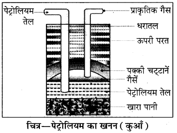 Rajasthan Board RBSE Class 8 Science Chapter 18 कार्बन और ईंधन 2