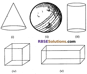 RBSE Solutions for Class 6 Maths Chapter 10 Understanding Three Dimensional Shapes Ex 10.1 image 1