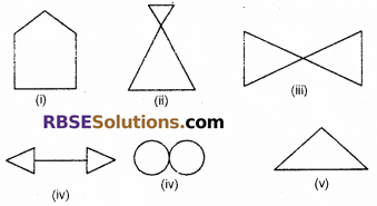 RBSE Solutions for Class 6 Maths Chapter 11 Symmetry Ex 11.1 image 3