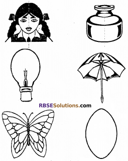 RBSE Solutions for Class 6 Maths Chapter 11 Symmetry In Text Exercise image 4