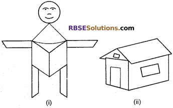 RBSE Solutions for Class 6 Maths Chapter 9 Simple Two Dimensional Shapes Ex 9.3 image 2