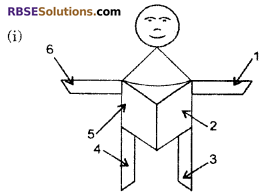 RBSE Solutions for Class 6 Maths Chapter 9 Simple Two Dimensional Shapes Ex 9.3 image 3
