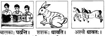 RBSE Solutions for Class 6 Sanskrit Chapter 2 अकारान्त-पुँल्लिङ्गशब्दप्रयोगः 4