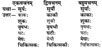 RBSE Solutions for Class 6 Sanskrit Chapter 2 अकारान्त-पुँल्लिङ्गशब्दप्रयोगः 5