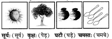 RBSE Solutions for Class 6 Sanskrit Chapter 2 अकारान्त-पुँल्लिङ्गशब्दप्रयोगः 7