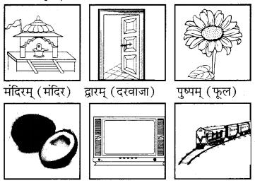 RBSE Solutions for Class 6 Sanskrit Chapter 4 अकारान्त-नपुंसकलिङ्गशब्दप्रयोगः 1