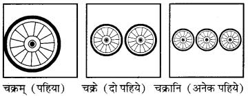 RBSE Solutions for Class 6 Sanskrit Chapter 4 अकारान्त-नपुंसकलिङ्गशब्दप्रयोगः 2