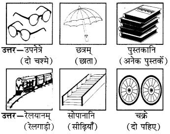 RBSE Solutions for Class 6 Sanskrit Chapter 4 अकारान्त-नपुंसकलिङ्गशब्दप्रयोगः 7