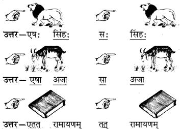 RBSE Solutions for Class 6 Sanskrit Chapter 5 सर्वनाम-शब्दप्रयोगः (एतत्-तत्-किम्) 1