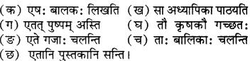 RBSE Solutions for Class 6 Sanskrit Chapter 5 सर्वनाम-शब्दप्रयोगः (एतत्-तत्-किम्) 10