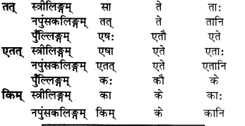 RBSE Solutions for Class 6 Sanskrit Chapter 5 सर्वनाम-शब्दप्रयोगः (एतत्-तत्-किम्) 11