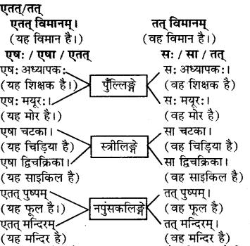 RBSE Solutions for Class 6 Sanskrit Chapter 5 सर्वनाम-शब्दप्रयोगः (एतत्-तत्-किम्) 12