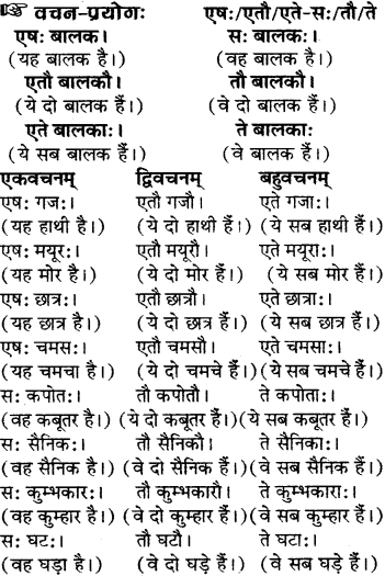 RBSE Solutions for Class 6 Sanskrit Chapter 5 सर्वनाम-शब्दप्रयोगः (एतत्-तत्-किम्) 13