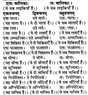 RBSE Solutions for Class 6 Sanskrit Chapter 5 सर्वनाम-शब्दप्रयोगः (एतत्-तत्-किम्) 15