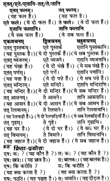 RBSE Solutions for Class 6 Sanskrit Chapter 5 सर्वनाम-शब्दप्रयोगः (एतत्-तत्-किम्) 16