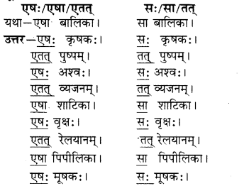 RBSE Solutions for Class 6 Sanskrit Chapter 5 सर्वनाम-शब्दप्रयोगः (एतत्-तत्-किम्) 2