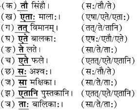 RBSE Solutions for Class 6 Sanskrit Chapter 5 सर्वनाम-शब्दप्रयोगः (एतत्-तत्-किम्) 5