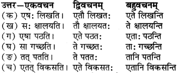 RBSE Solutions for Class 6 Sanskrit Chapter 5 सर्वनाम-शब्दप्रयोगः (एतत्-तत्-किम्) 8