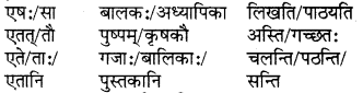 RBSE Solutions for Class 6 Sanskrit Chapter 5 सर्वनाम-शब्दप्रयोगः (एतत्-तत्-किम्) 9
