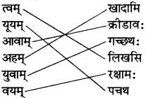 RBSE Solutions for Class 6 Sanskrit Chapter 6 सर्वनाम-शब्दप्रयोगः (अस्मद्-युष्मद्) 1