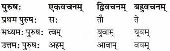 RBSE Solutions for Class 6 Sanskrit Chapter 6 सर्वनाम-शब्दप्रयोगः (अस्मद्-युष्मद्) 4