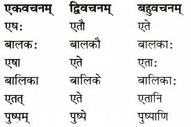 RBSE Solutions for Class 6 Sanskrit Chapter 6 सर्वनाम-शब्दप्रयोगः (अस्मद्-युष्मद्) 5