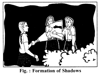 RBSE Solutions for Class 6 Science Chapter 16 Light and Shadows 3