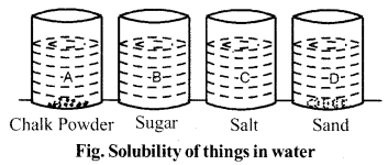 RBSE Solutions for Class 6 Science Chapter 3 Nature of Things 3