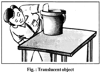RBSE Solutions for Class 6 Science Chapter 3 Nature of Things 4