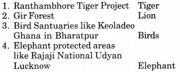 RBSE Solutions for Class 7 English Chapter 8 The Tiger Man 6