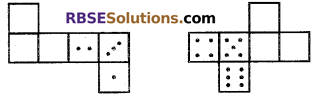 RBSE Solutions for Class 7 Maths Chapter 12 Visualizing Solid Shapes Ex 12.1 - 6