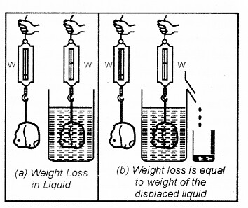 RBSE Solutions for Class 7 Science Chapter 12 Pressure 1