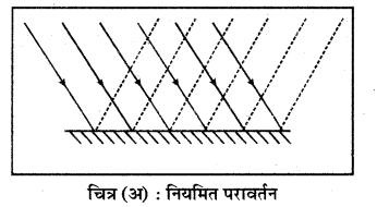 RBSE Solutions for Class 7 Science Chapter 14 प्रकाश का परावर्तन 4