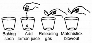 RBSE Solutions for Class 7 Science Chapter 5 Acids, Bases and Salts 1